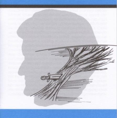 Die Walküre Bayreuth Buchhandlung Blaue Hefte Stemmle
